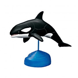 Orca Killer Whale 4D 3D Puzzle Egg Toy Kit