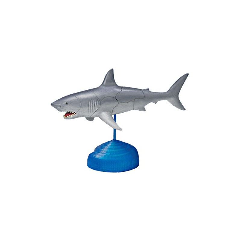 Shark Toy Box : Great white shark d puzzle egg toy kit